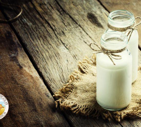 Latte di pecora: nutrizione, dieta e cosmetica